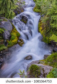 Small Waterfall Along Paradise River in wilderness below Mount Rainier