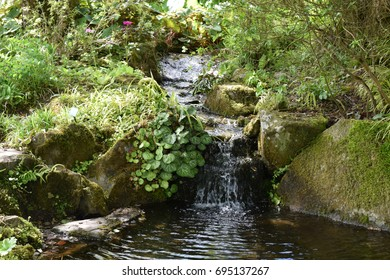 Small waterfall, cascading into a calm pool