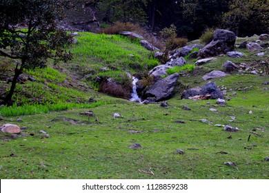 A small waterfall en route Sar Pass trek at Padri Campsite, Near Kasol, Himachal, Indian Himalayas