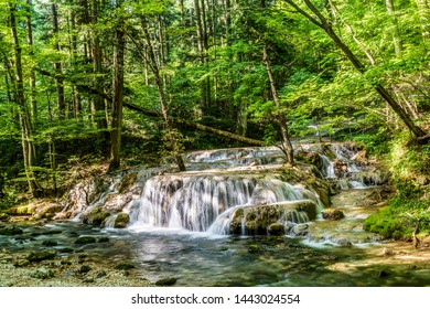 Small waterfall encountered while trekking on the Nera Gorges in the Caras-Severin county of Romania.