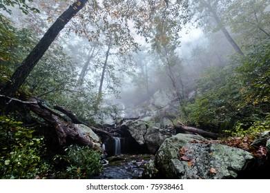 Small waterfall in fog.