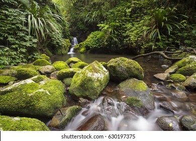 Small waterfall in the Lamington National park, Queensland