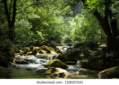 a small waterfall in the middle of lush vegetation