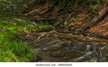 Small waterfall near Kouty nad Desnou village in summer day in forest - Shutterstock ID 1800928261