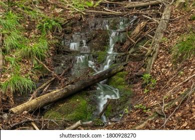 Small waterfall near Kouty nad Desnou village in summer day in forest - Shutterstock ID 1800928270