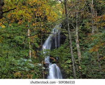 Small Waterfall at Oirase Stream, TOWADA, AOMORI, JAPAN