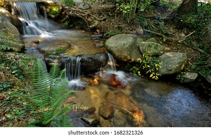 Small waterfall in a river with rocks and vegetation