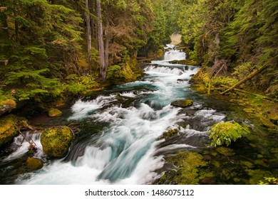 Small waterfalls and rapids on the upper McKenzie river in the Oregon Cascade mountains