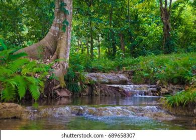 Small Waterfalls in a stream in Palenqu