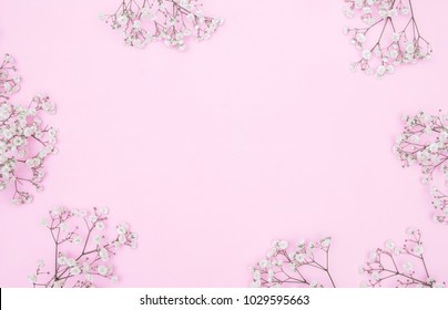 Small white beautiful flowers, pattern composition on a pink background. Gypsophila flowers. Flat lay, top view, copy space