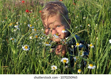 A small white boy with blond hair hid himself and gaily peeks out from behind the wildflowers on a spring meadow.