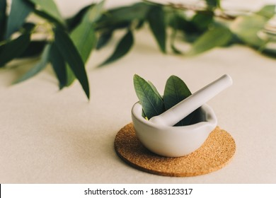 Small white ceramic mortar, with eucalyptus leaves. Ingredients for alternative medicine and natural cosmetics. Beauty and spa concept.
