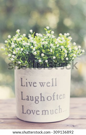 Small White Flowers Pot Message Stock Photo Edit Now 309136892