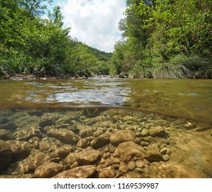 Small wild river with vegetation on the riverbanks and rocks underwater, split view above and below water surface, La Muga, Girona, Alt Emporda, Catalonia, Spain