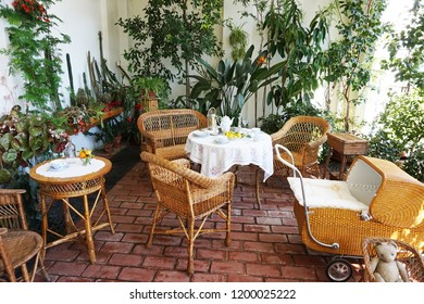 small winter garden with tropical plants as nice background