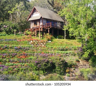 small wood house on hill