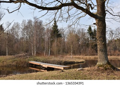 Small wooden bridge crossing a pond in an idyllic landscape