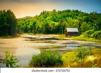 Une petite cabane en bois au bord d'une petite rivière ou d'un étang au milieu d'une végétation luxuriante proche du coucher du soleil.