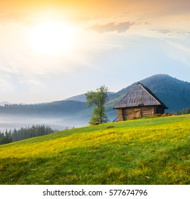 small wooden house on a green hill slope