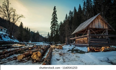 Small wooden shed in pine forest during winter. Wooden logs in the forest
