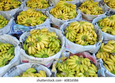 Small yellow bananas at Thai market