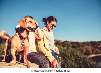 Small yellow dog and family enjoying together outdoors