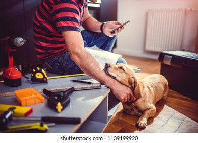 Small yellow dog sleeping beside his owner during kitchen renovation