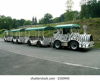 small zebra train