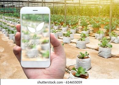 Smart agriculture, farm , sensor concept. Farmer hand using mobile phone for monitoring property of soil (pH, moisture , light level) in plant vegetables farm. Flare light effect