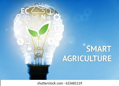 Smart agriculture, sensor concept.  Light bulb , plant , moisture, ph, nitrogen, phosphorus, potassium and sunlight infographic. Texts with blue background. Flare light