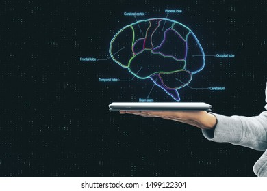Smart brain concept with brain parts scheme and human hand with digital tablet at dark abstract background.