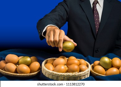 smart business man allocate golden egg into many baskets. do not put all eggs in one basket. has good return of investment in each buiness