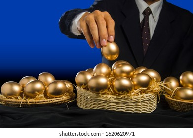 smart business man allocate golden egg into many baskets. do not put all eggs in one basket. has very good return on investment in each buiness