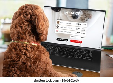 Smart dog ordering products using an online shopping website. Pet themed shopping card summary or checkout screen. Concept for E-commerce, shop online and home delivery. Selective focus.