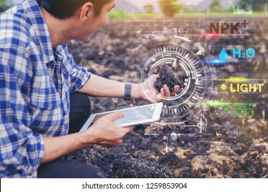 Smart farm, farmer owner using touchpad to control soil quality before seed plant. future agriculture concept