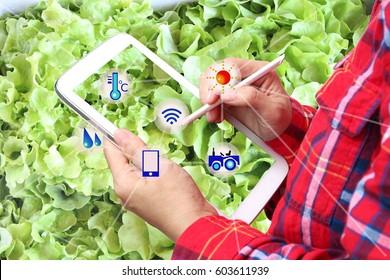 smart farmer,Agriculture consept