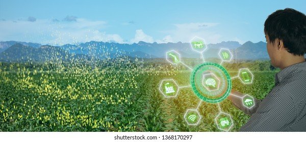 smart farming with agriculture industry 4.0 concept, farmer use tractor in the farm for Plowing, Harrowing, Sowing Intercultivation, Spraying/Pesticide application, Harvesting, Transportation