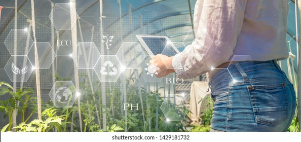 Smart farming argriculture concept. hands holding tablet on blurred organic farm as background