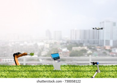 smart farming concept, robot in agriculture field work in the urban or vertical farm and check,management, monitor keep data analysis in each day in the agriculture farm