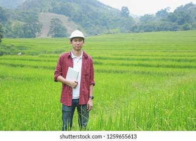 Smart Farming Management Information System Using Technologies Stock