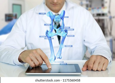 Smart health care internet of things and  augmented reality education , Artificial intelligence hologram bone bone structure technology concept. Doctor using tablet with ar application popup screen.