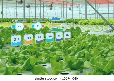 smart industry robot 4.0 agriculture concept,industrial agronomist,farmer using augmented reality to monitor, control the condition in vertical or indoor farm ,the data  Ph, Temp, Ic, humidity, co2