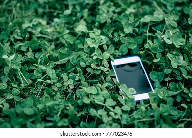 Smart phone in the grass. Lost phone