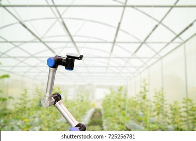smart robotic in agriculture concept, robot farmers (automation) must be programmed to work in the vertical or indoor farm for increase efficiency, growing a seed, harvesting, monitoring insect or bug