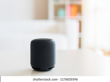 Smart speaker and virtual voice assistant at home