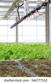 Smart spraying equipment in modern agricultural garden