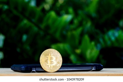 Smartphone with Bitcoin Cash on nature background. cryptocurrency concept.