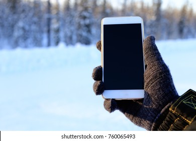 smartphone in hand in the woods