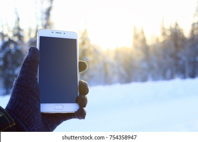 smartphone in the hands in the winter forest