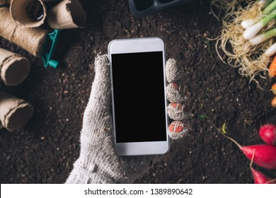 Smartphone mock up for organic homegrown produce cultivation, male gardener holding mobile phone over harvested vegetable and gardening equipment